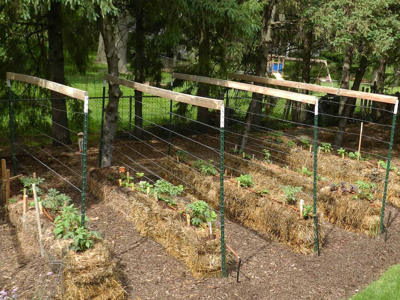 straw bale garden before and after - Straw Bale Gardens