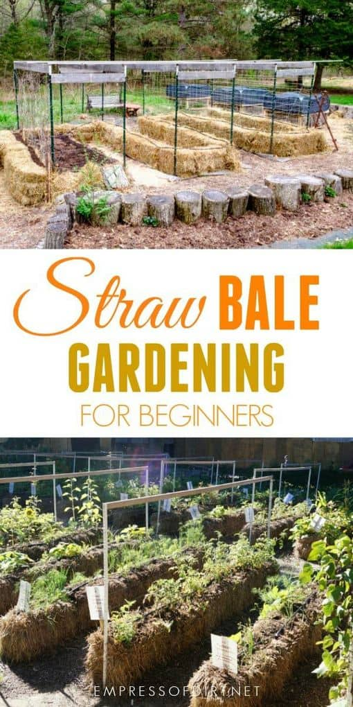 How to Get Started with Straw Bale Gardening